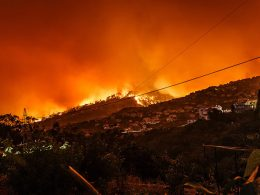 Trumps Rejects California's Request for Federal Assistance to Repair Wildfire Damages