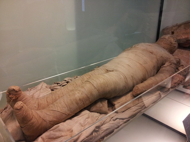 Scientists Pioneer New Technique to Study Egyptian Mummies